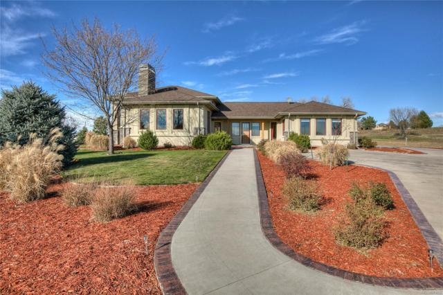 1017 Montana Court, Windsor, CO 80550 (#6436206) :: Sellstate Realty Pros