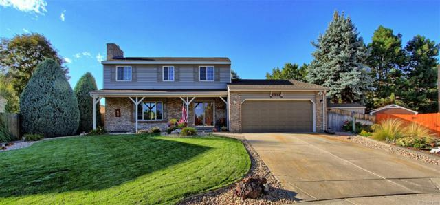 11542 Albion Court, Thornton, CO 80233 (#6441562) :: The Heyl Group at Keller Williams