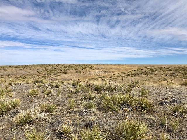 0003 County Road 166, Agate, CO 80101 (#6444816) :: The Gilbert Group