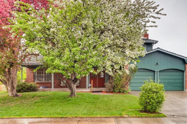 8435 Newland Drive, Arvada, CO 80003 (#6445593) :: House Hunters Colorado