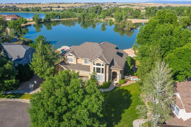 307 Teal Court, Windsor, CO 80550 (#6447052) :: The Colorado Foothills Team | Berkshire Hathaway Elevated Living Real Estate