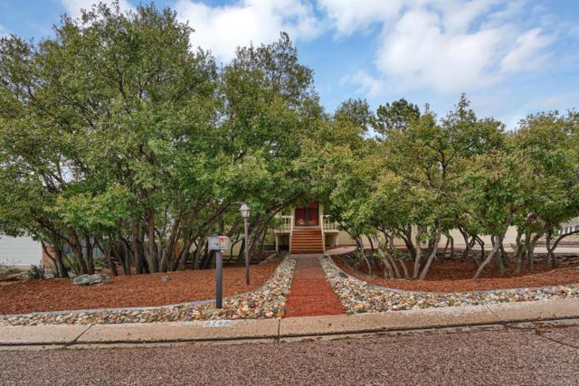 2743 Rigel Drive, Colorado Springs, CO 80906 (MLS #6447293) :: 8z Real Estate