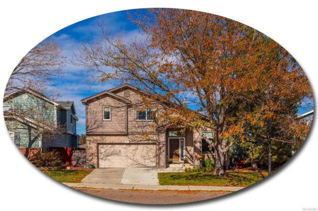 5260 Morning Glory Place, Highlands Ranch, CO 80130 (#6447717) :: Bicker Realty