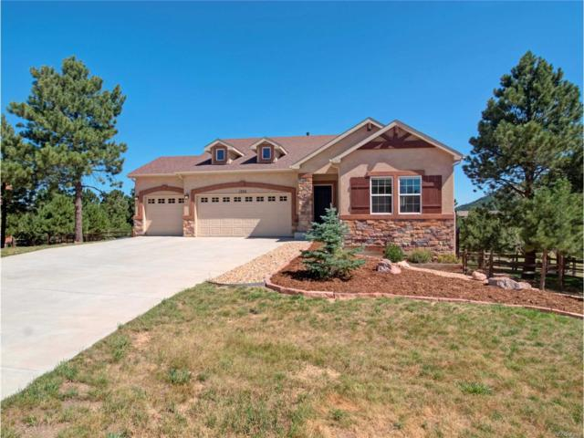 1702 Painter Drive, Monument, CO 80132 (MLS #6447788) :: 8z Real Estate
