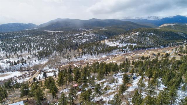 6668 County Road 43, Bailey, CO 80421 (#6448550) :: The City and Mountains Group