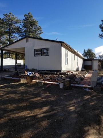 5882 County Road 27A, Cotopaxi, CO 81223 (#6449789) :: Mile High Luxury Real Estate