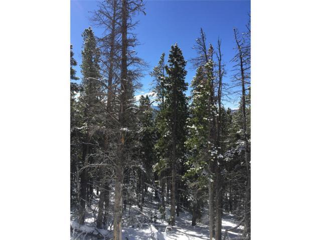 Harris Drive, Idaho Springs, CO 80452 (MLS #6451065) :: 8z Real Estate