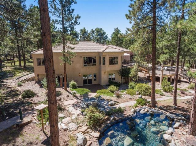 9530 Trotter Circle, Colorado Springs, CO 80908 (#6451997) :: The DeGrood Team