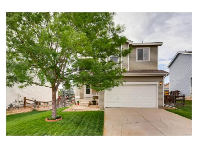9621 Elk Mountain Circle, Littleton, CO 80125 (#6452718) :: The Sold By Simmons Team