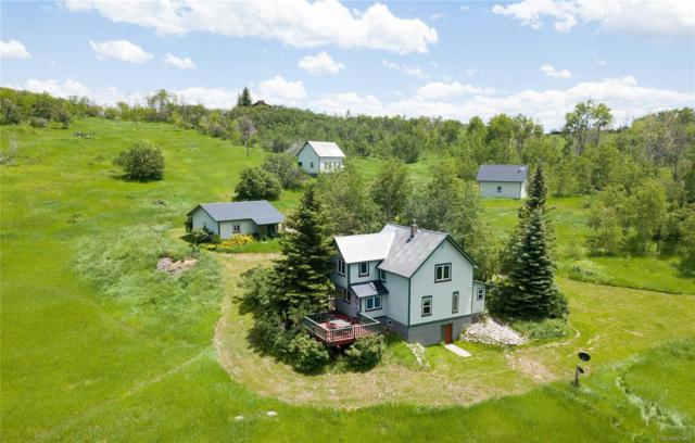 22040 Whitewood Drive, Steamboat Springs, CO 80487 (MLS #6452863) :: 8z Real Estate