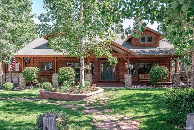 1101 Gcr 830, Fraser, CO 80442 (MLS #6456294) :: 8z Real Estate