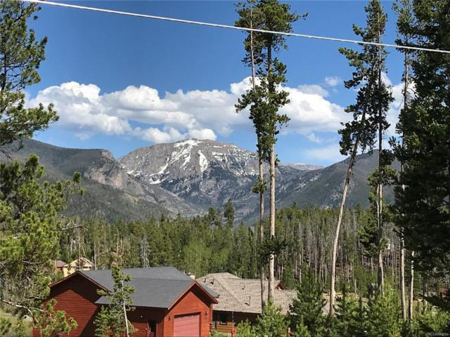 92 Mad Moose Lane, Grand Lake, CO 80447 (#6457127) :: The Tamborra Team