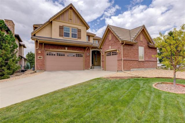 10410 Willowwisp Way, Highlands Ranch, CO 80126 (#6460669) :: The DeGrood Team