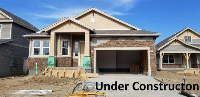 1965 Shadow Lake Drive, Windsor, CO 80550 (MLS #6461628) :: 8z Real Estate