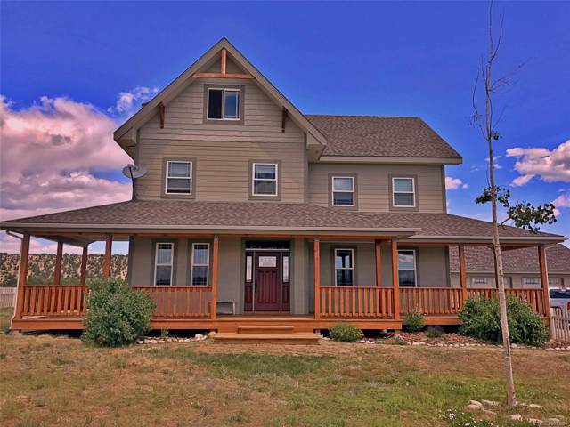 12908 County Road 162, Nathrop, CO 81236 (#6461924) :: The DeGrood Team