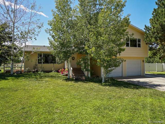 2131 Bryce Court, Grand Junction, CO 81507 (MLS #6462126) :: 8z Real Estate
