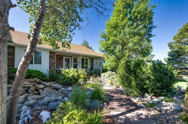 6292 Bow Meadows Drive, Elizabeth, CO 80107 (MLS #6462292) :: 8z Real Estate