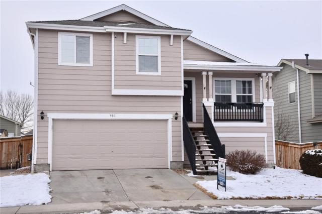 981 Quail Circle, Brighton, CO 80601 (#6462411) :: The City and Mountains Group