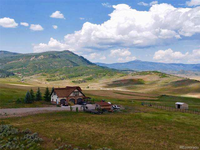 23250 Fawn Creek Road, Steamboat Springs, CO 80487 (MLS #6465997) :: Bliss Realty Group
