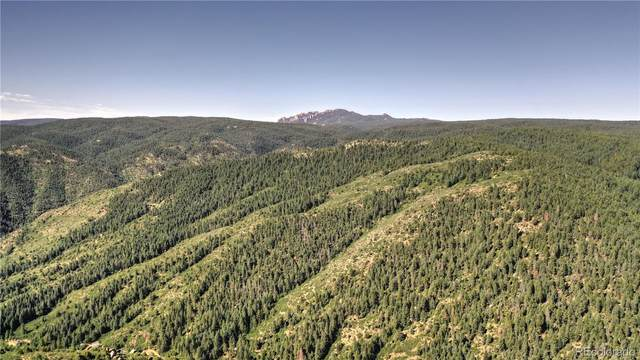 1945 Hidden Valley Road, Sedalia, CO 80135 (MLS #6468665) :: 8z Real Estate