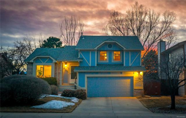 8160 Candleflower Circle, Colorado Springs, CO 80920 (#6472807) :: My Home Team
