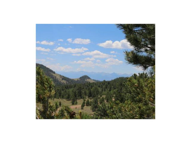 Cr 16, Cotopaxi, CO 81223 (MLS #6475682) :: 8z Real Estate