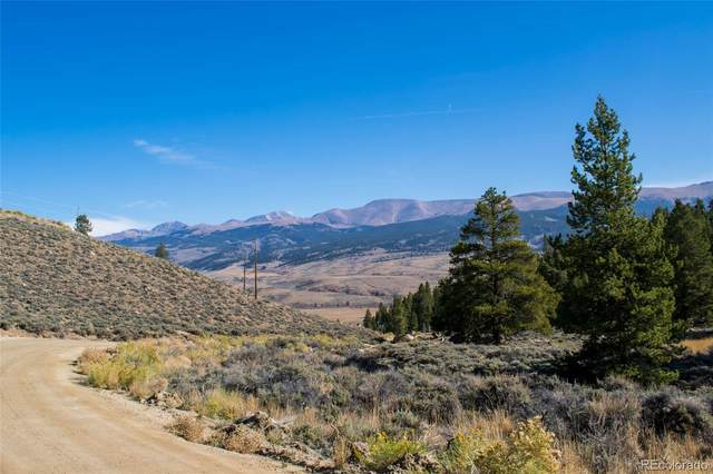 66 Peak View Drive, Twin Lakes, CO 81251 (#6477517) :: The DeGrood Team