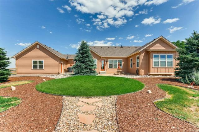 5302 Danvers Court, Castle Rock, CO 80104 (#6478104) :: Hometrackr Denver