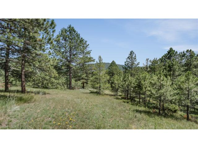 7325 Red Tail Way, Evergreen, CO 80439 (#6483802) :: The Peak Properties Group
