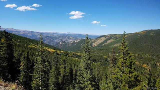Sawmill Lane, Idaho Springs, CO 80452 (#6485701) :: Wisdom Real Estate
