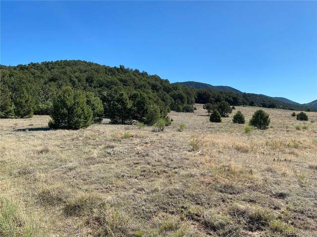 Wiest Hill Trail, Canon City, CO 81212 (MLS #6489090) :: 8z Real Estate