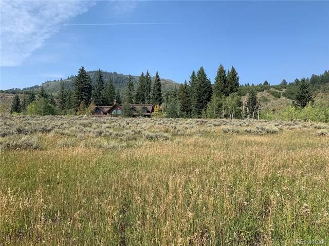 22635 Commanche Road, Oak Creek, CO 80467 (#6490584) :: The DeGrood Team