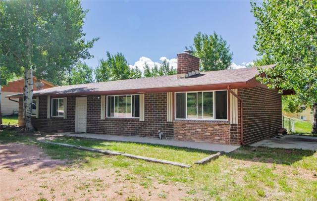 1035 Parkview Road, Woodland Park, CO 80863 (#6491345) :: The HomeSmiths Team - Keller Williams