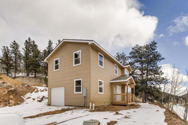 217 Bishop Road, Bailey, CO 80421 (#6491919) :: Bring Home Denver with Keller Williams Downtown Realty LLC