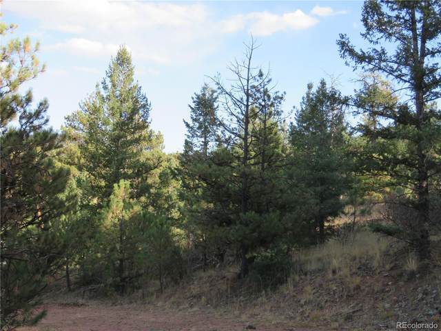 4943 County Road 11 Road, Florissant, CO 80816 (MLS #6493209) :: 8z Real Estate