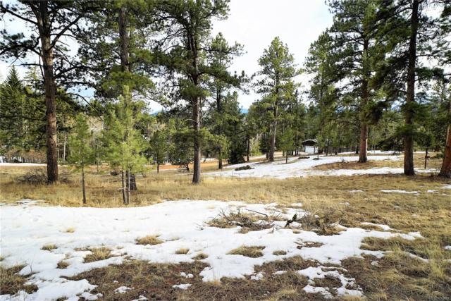 34667 Circle Drive, Pine, CO 80470 (#6493486) :: Berkshire Hathaway Elevated Living Real Estate