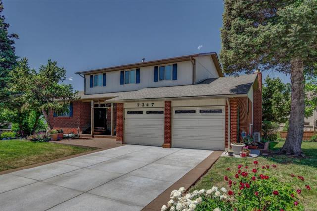 7347 Robb Street, Arvada, CO 80005 (MLS #6493919) :: 8z Real Estate
