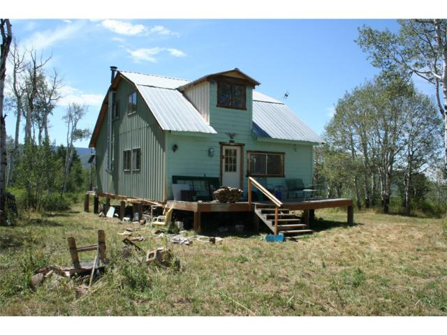 15250 Harrison Creek Gulch Road, Collbran, CO 81624 (#6497379) :: Group 46:10 - Denver