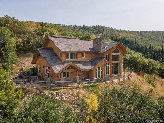 28155 Valley View Lane, Steamboat Springs, CO 80487 (#6498925) :: iHomes Colorado