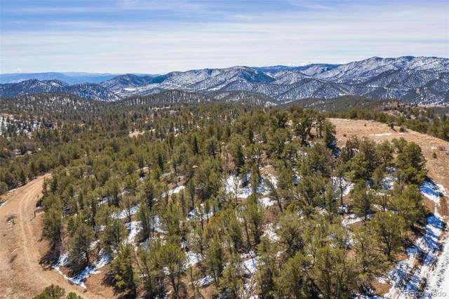 1427 Horse Thief Gulch Road, Canon City, CO 81212 (#6498981) :: The DeGrood Team