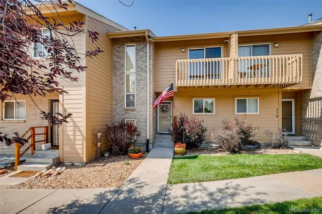 280 Oman Road, Castle Rock, CO 80104 (#6503793) :: The Griffith Home Team