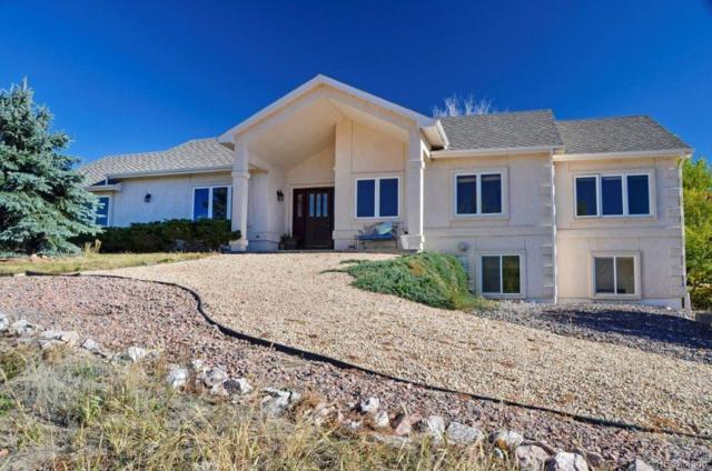 18235 White Fawn Drive, Monument, CO 80132 (#6513259) :: Wisdom Real Estate