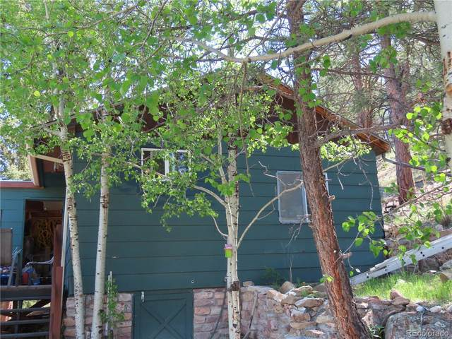 74 Brook-By-Way, Florissant, CO 80816 (MLS #6513881) :: Bliss Realty Group