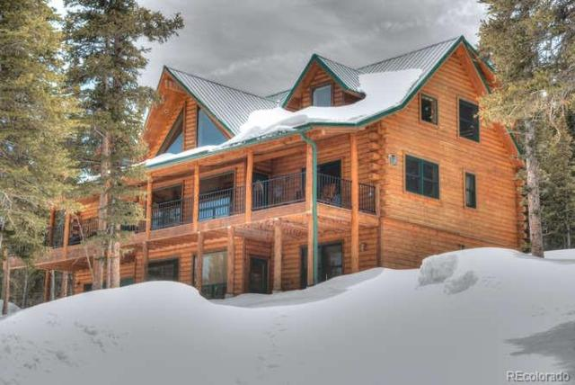 1002 Prunes Place, Fairplay, CO 80440 (#6514103) :: Wisdom Real Estate