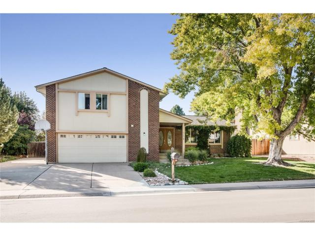 7827 S Marshall Court, Littleton, CO 80128 (#6514234) :: The Sold By Simmons Team
