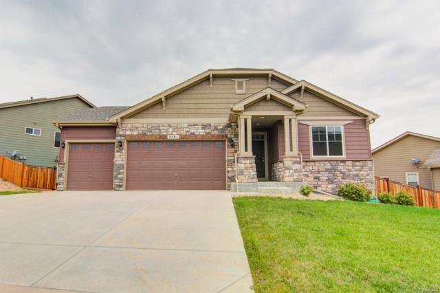 2581 Paint Pony Circle, Castle Rock, CO 80108 (#6514433) :: The City and Mountains Group
