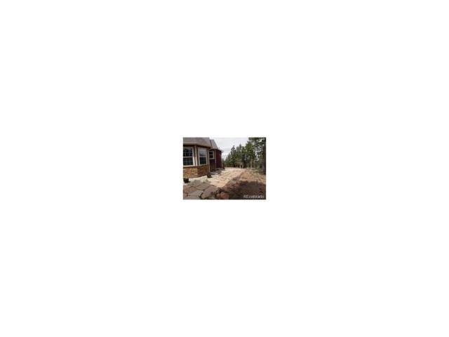 2589 Elk Park Road, Larkspur, CO 80118 (MLS #6515654) :: 8z Real Estate