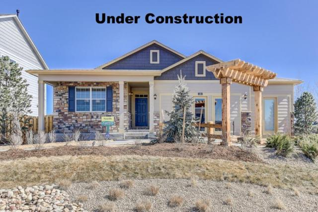 1670 Highfield Drive, Windsor, CO 80550 (#6515944) :: 5281 Exclusive Homes Realty