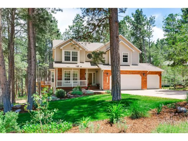 15625 Timberside Court, Colorado Springs, CO 80921 (MLS #6516332) :: 8z Real Estate