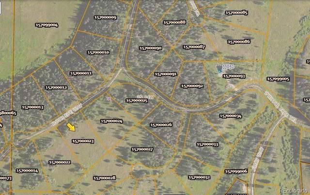 20540 Hoch-Eye Way, Oak Creek, CO 80467 (#6517617) :: The Margolis Team